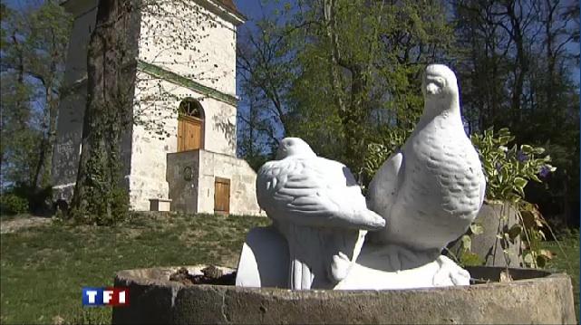 pigeonniergitTV.jpg
